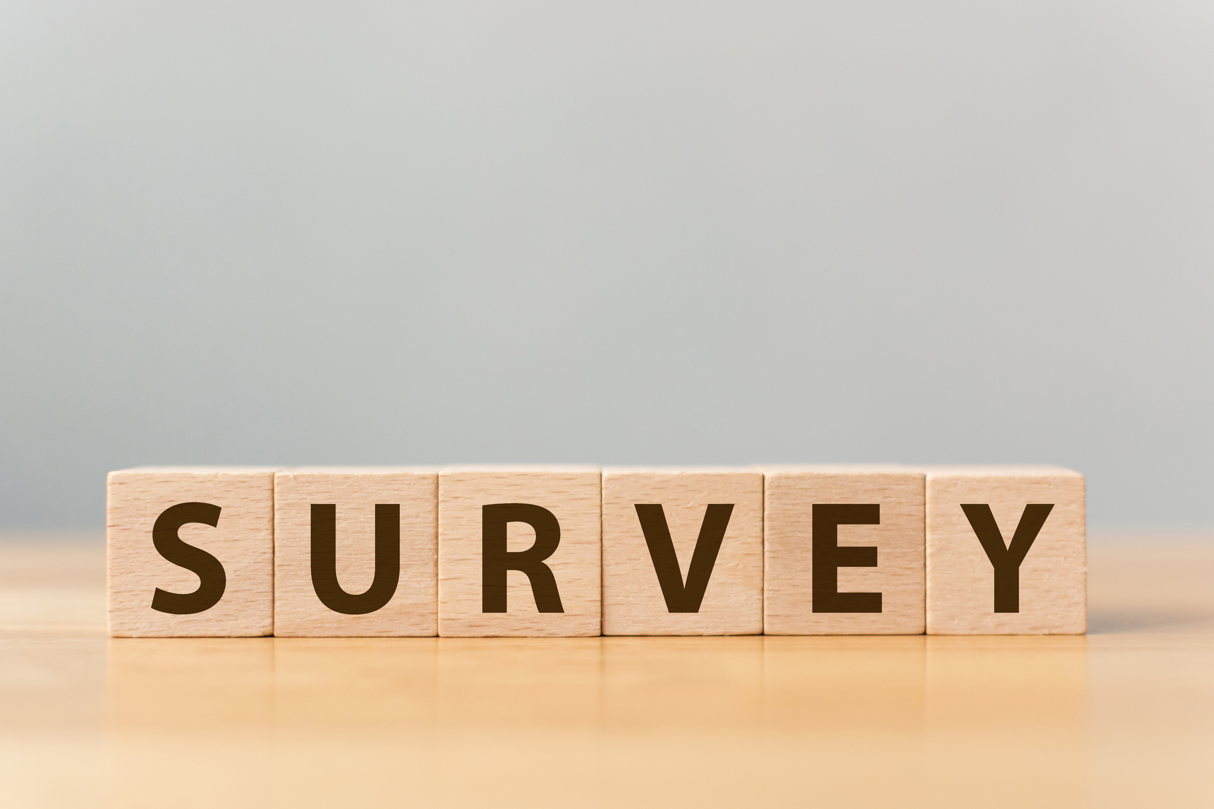 PayDashboard 2021 Payroll Insights Survey - RESULTS